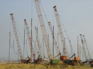 2001-12-VC-Cranes-Penny's-Bay